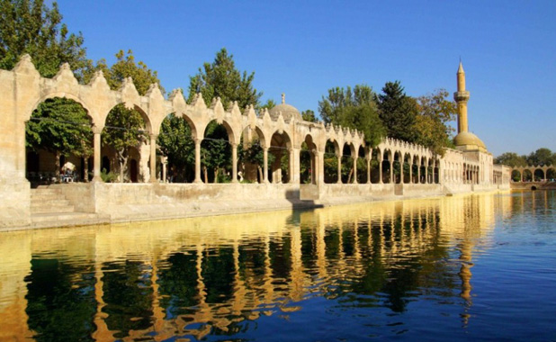 Sacred Carp Pools at Şanlıurfa